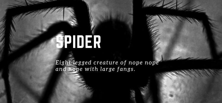 Spider - (n) Eight legged creature of nope nope and nope with large fangs.