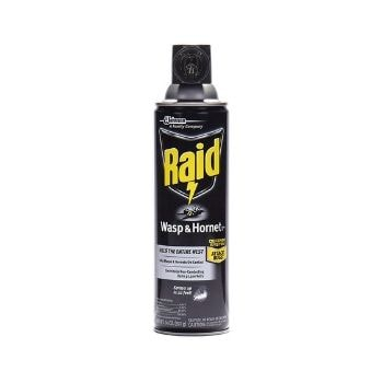 Raid Wasp And Hornet Killer Spray
