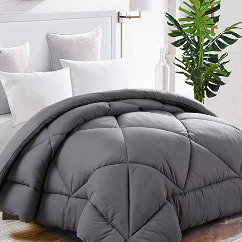 TEKAMON All Season Queen Comforter